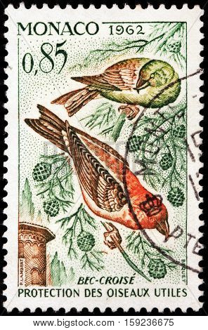 LUGA RUSSIA - NOVEMBER 29 2016: A stamp printed by MONACO shows red crossbill (Loxia curvirostra) - a small passerine bird in finch family Fringillidae circa 1962