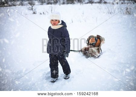 Little girl drove sleigh whith a red cat on snow in the countryside.