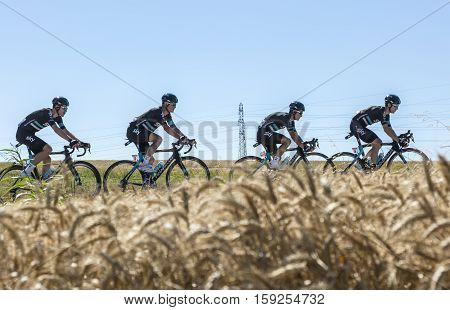 Saint-Quentin-FallavierFrance - July 16 2016: Four cyclists of Team Sky riding in a wheat plain during the stage 14 of Tour de France 2016.