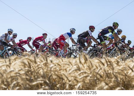 Saint-Quentin-FallavierFrance - July 16 2016: The French National Champion Arthur Vichot of FDJ Team riding in the peloton in a wheat plain during the stage 14 of Tour de France 2016.