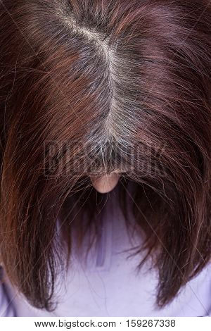 Closeup of a woman's head with parted gray hair regrown roots.