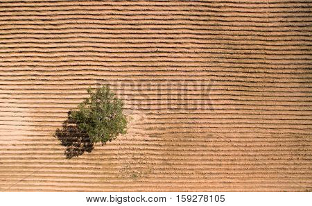 Aerial View Of Farmland, Drone View Of Farmland Landscape Nature Background.