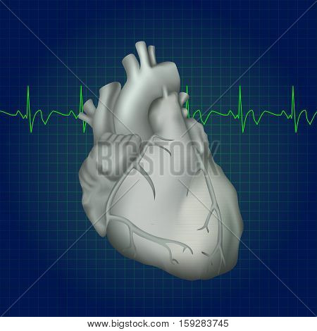 Human heart. Anatomy illustration. Gray image, dark blue science background. Heartbeat