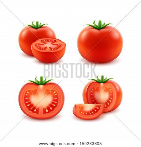 Vector Set of Big Ripe Red Fresh Cut Whole Tomatoes Close up Isolated on White Background