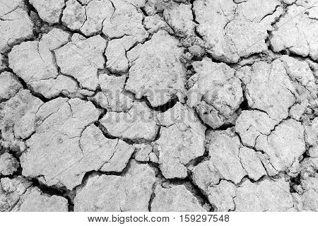 Drought Land - Cracked Ground.