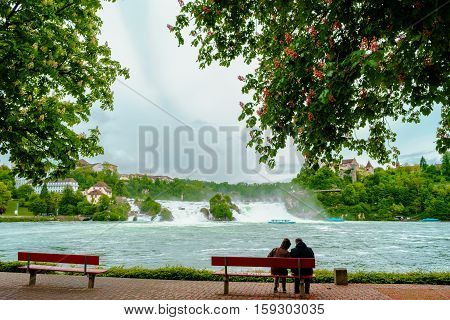 Bench Under The Tree With Couple Relaxing At Rhine Falls