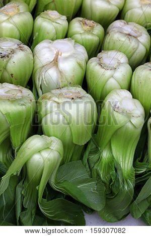 Fresh Green Bok Choy Chinese Cabbage Leaves