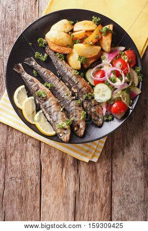 Grilled Sardines With Roasted Potatoes And Fresh Vegetable Salad Close-up. Vertical Top View