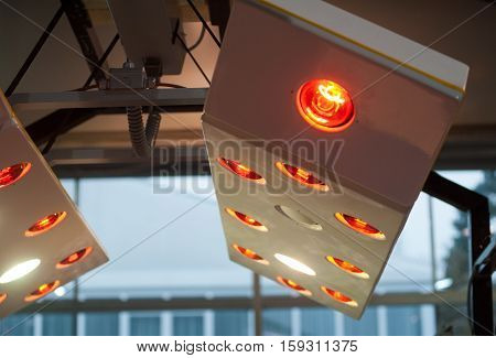 solarium for horses working indoors , close up