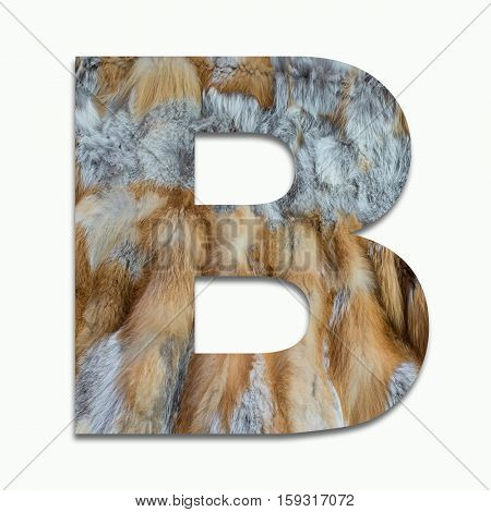 B red fox fur in a font trained