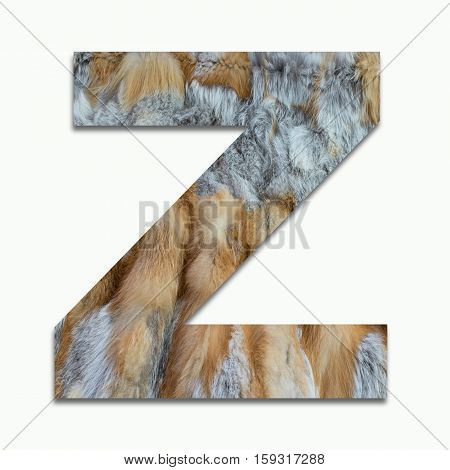 Z red fox fur in a font trained