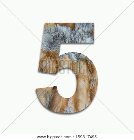 5 red fox fur in a font trained