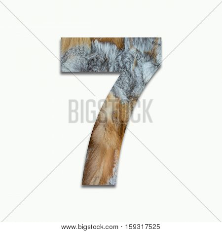 7 red fox fur in a font trained