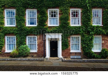 English House. facade overgrown with ivy. Exeter. Devon