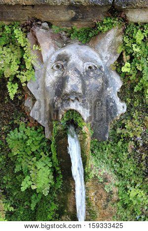 Dog fountain in Villa d'Este of Tivoli, Italy