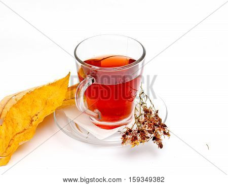 picture of a St. John's wort tea on white background