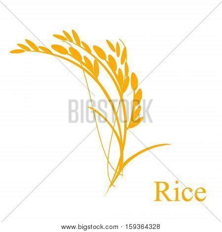 Rice Ears Vector