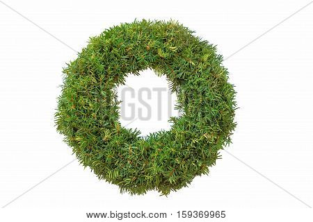 Traditional Undecorated Evergreen Yew Wreath For Christmas