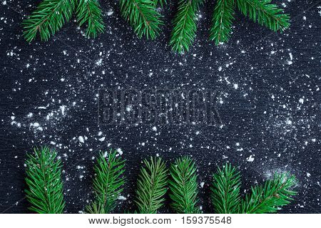 Christmas Tree Branches On Winter Snowbound Black Space Background