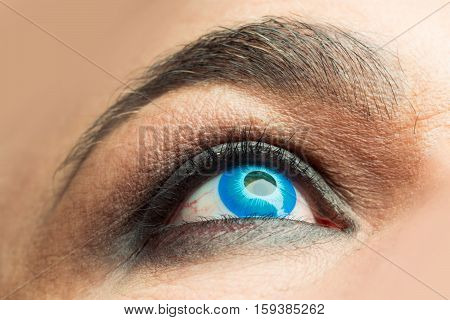 Male Eye With Blue Lens