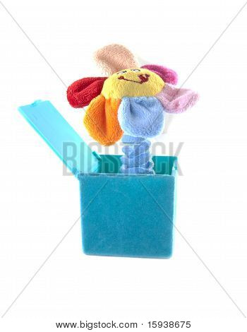 Flower In A Box