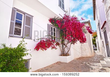 traditional houses at Hydra island Saronic Gulf Greece