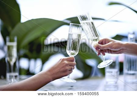 Champagne in beautiful glass. Meeting in a city restaurant or cafe. Houseplants near window, daylight