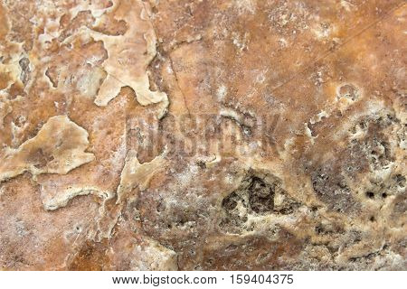 Texture or brown stone texture for background. texture surface of marble stone from nature