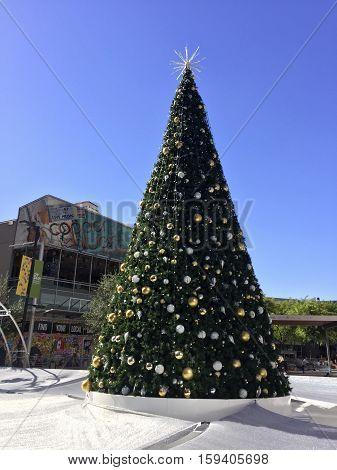 PHOENIX AZ - NOVEMBER 17 2016: City Skate with decorated Christmas tree in the center of heat shielded skate ring in always sunny Phoenix Arizona Arizona