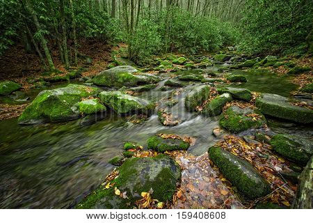 Middle Prong of the Little River, near Tremont, Great Smoky Mountains National Park, Tennesse, USA