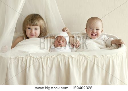 Three children brothers and sisters sit in a white cradle and a fun laugh. Newborn baby with their family family values in a clean room