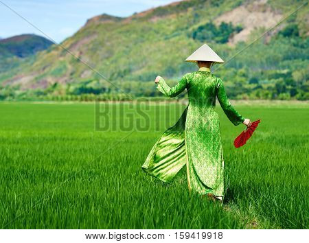 Vietnamese girl walking in a rice field in traditional long dress and palm leaf conical hat