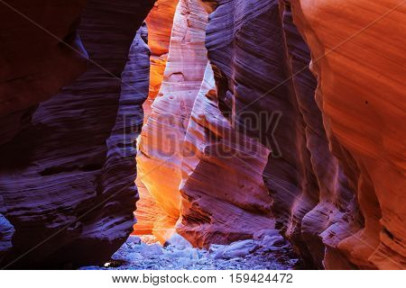 Slot canyon in Grand Staircase Escalante National park, Utah, USA. Unusual colorful sandstone formations in deserts of Utah are popular destination for hikers.