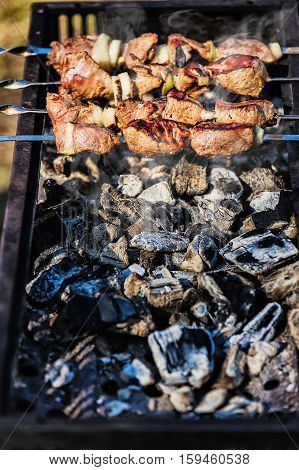 delicious grilled skewers on hot coals put on the rotisserie