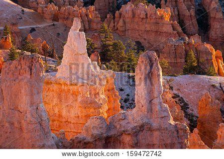 Queen Victoria formation - Bryce Canyon National Park, Queens Garden.