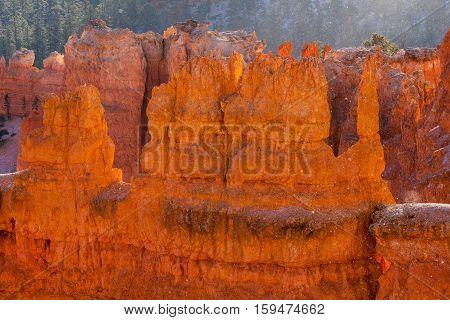 Orange Hoodoos in Bryce Canyon National Park
