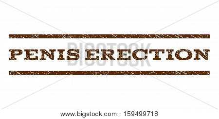 Penis Erection watermark stamp. Text tag between horizontal parallel lines with grunge design style. Rubber seal brown stamp with unclean texture. Vector ink imprint on a white background.