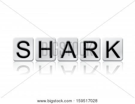 Shark Isolated Tiled Letters Concept And Theme