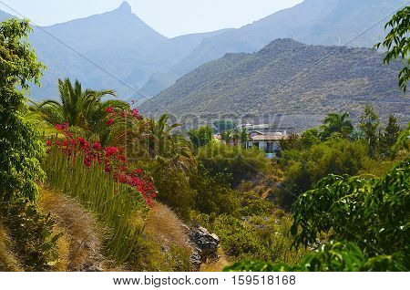 Beautiful view of Torviscas Alto,Tenerife,Canary Islands,Spain.Vacation or travel concept.