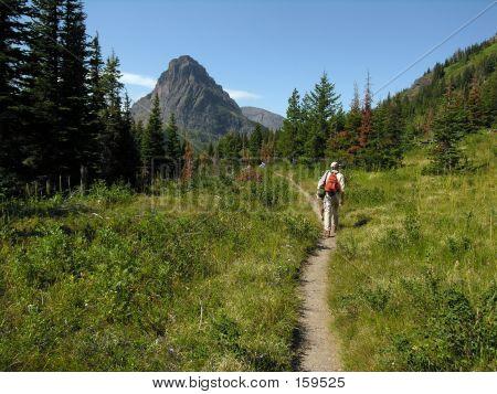Trail Hiker
