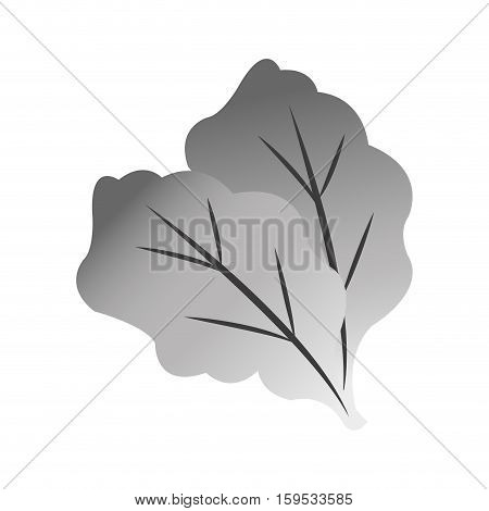 Lettuce icon. Healthy organic fresh and natural food theme. Isolated design. Vector illustration