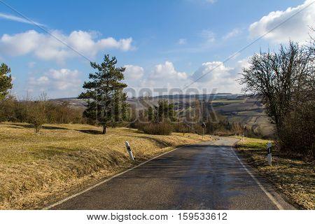 Rural landscape / Rural landscape with trees along the road.