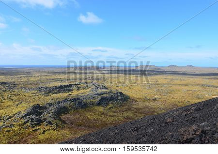 Fields of moss covered lava rock in Iceland.