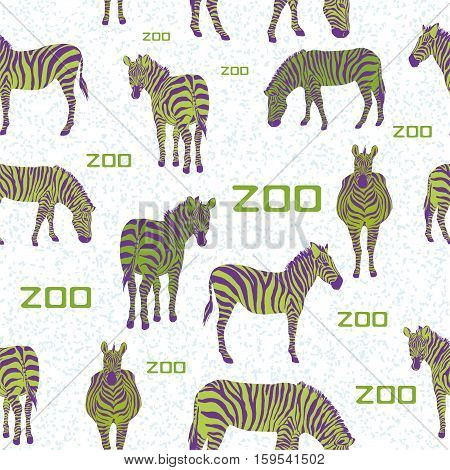 Seamless vector pattern of the horses zebra animal uncommon coloring purple and lime with the slogan zoo on white background