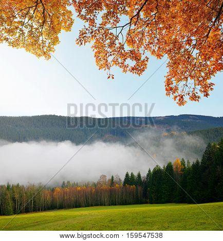 Morning haze in the National park Sumava, Czech Republic. Autumn landscape.