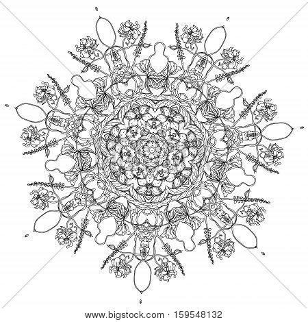 contoured luxury flowers in mandala shape. zen style picture for anti stress colouring book. Hand-drawn, doodle, vector the best for your design, wedding cards, coloring book. Black and white.
