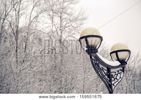 black street lamp with two lights in the woods at the track
