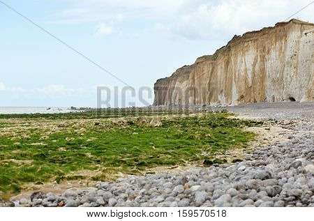 Beautiful Landscape Of A Beach With Weeds And Cliffs In Normandy, France