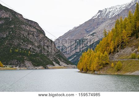 A serene mountain lake gray of the autumn sky in Levigno