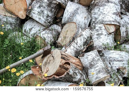 axe on wood with a pile of chopped wook